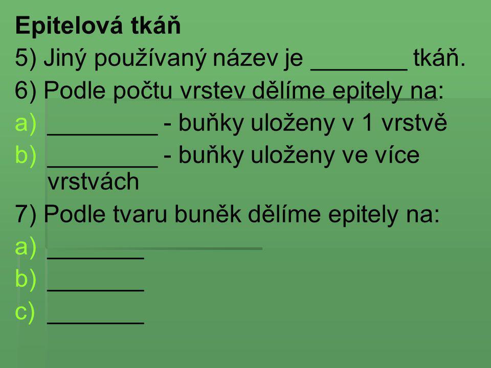 Epitelová tkáň 5) Jiný používaný název je _______ tkáň. 6) Podle počtu vrstev dělíme epitely na: ________ - buňky uloženy v 1 vrstvě.