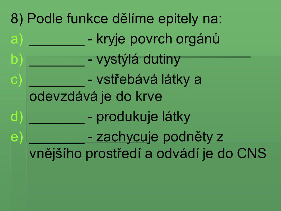8) Podle funkce dělíme epitely na:
