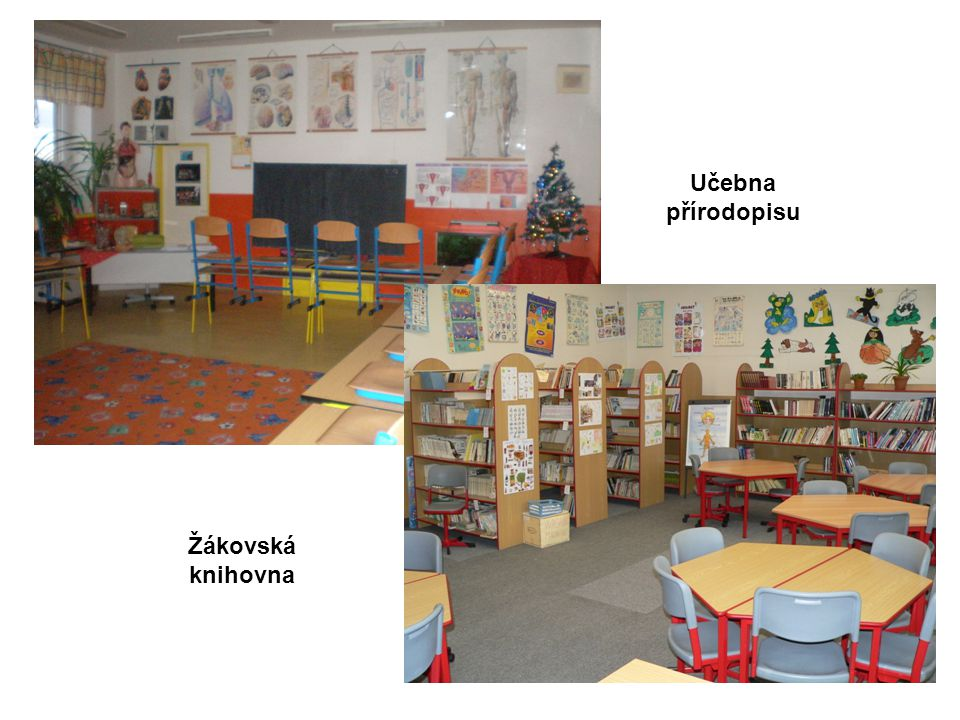 Učebna přírodopisu Žákovská knihovna