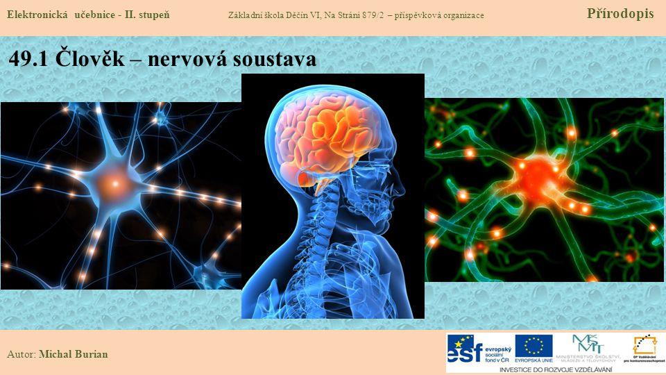 49.1 Člověk – nervová soustava