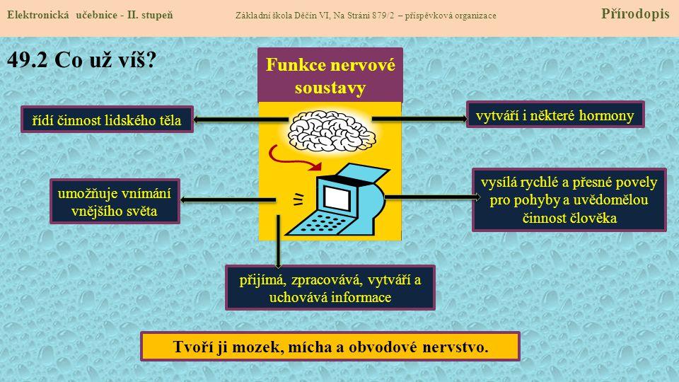 Funkce nervové soustavy Tvoří ji mozek, mícha a obvodové nervstvo.