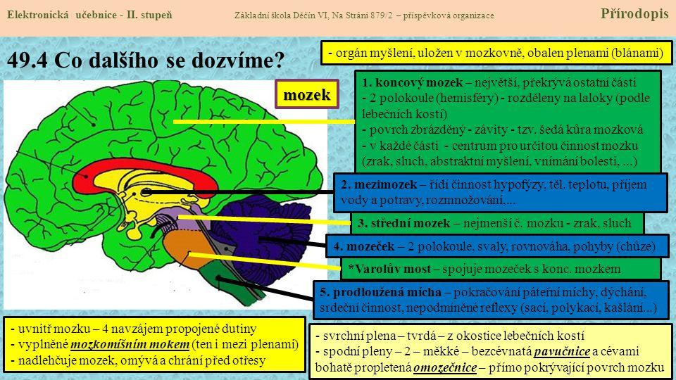 49.4 Co dalšího se dozvíme mozek