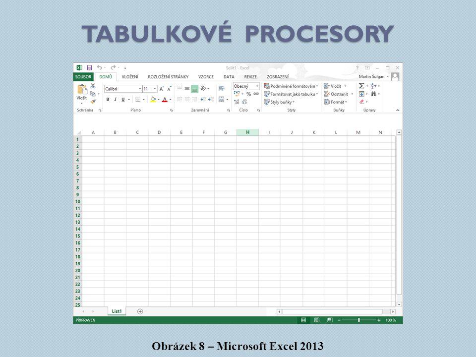 Obrázek 8 – Microsoft Excel 2013