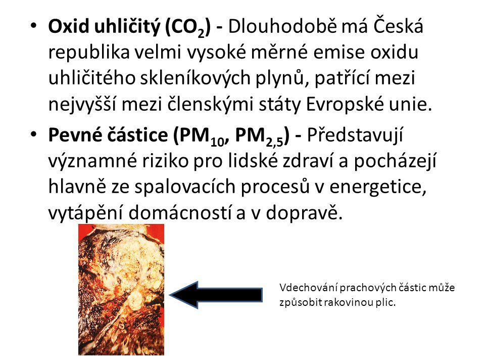 Oxid uhličitý (CO2) - Dlouhodobě má Česká republika velmi vysoké měrné emise oxidu uhličitého skleníkových plynů, patřící mezi nejvyšší mezi členskými státy Evropské unie.