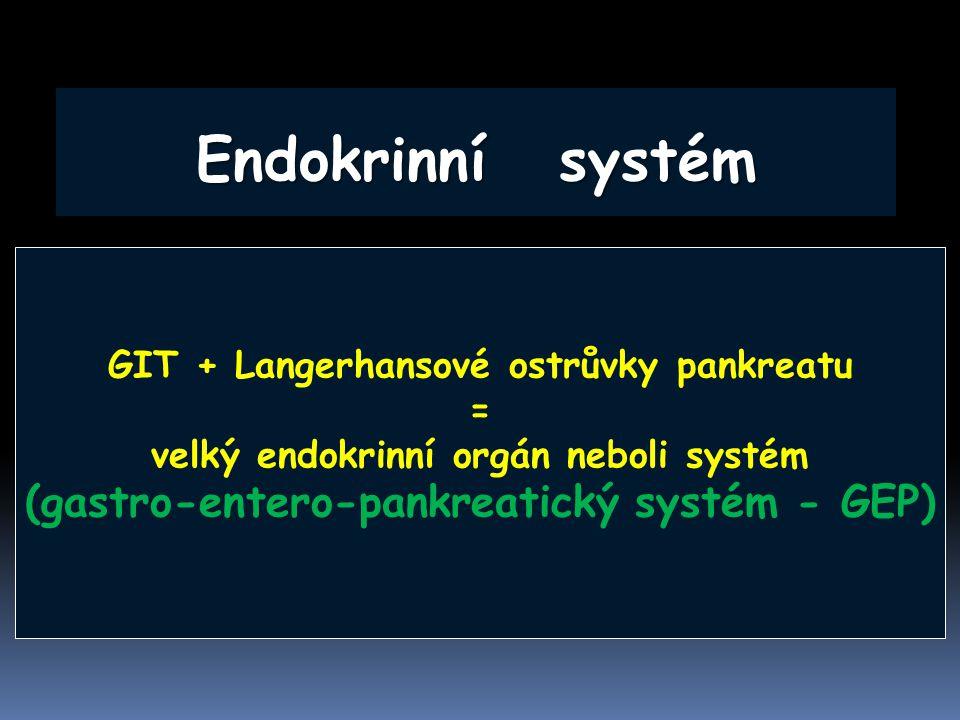 Endokrinní systém (gastro-entero-pankreatický systém - GEP)