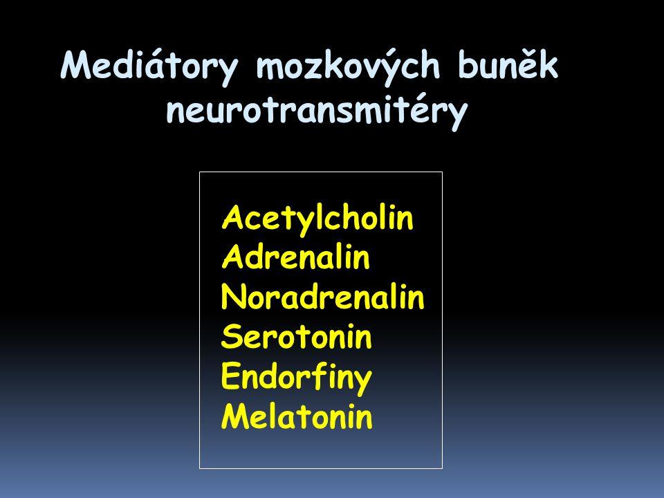 Mediátory mozkových buněk