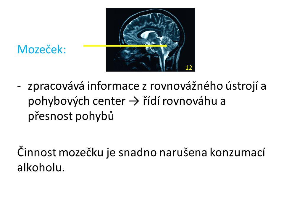 Činnost mozečku je snadno narušena konzumací alkoholu.