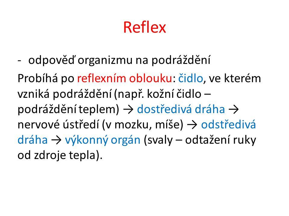 Reflex odpověď organizmu na podráždění