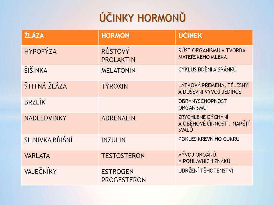 ÚČINKY HORMONŮ ŽLÁZA HORMON ÚČINEK HYPOFÝZA RŮSTOVÝ PROLAKTIN ŠIŠINKA