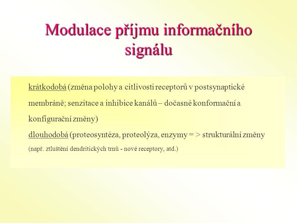 Modulace příjmu informačního signálu