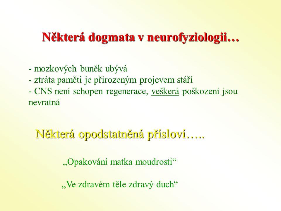 Některá dogmata v neurofyziologii…