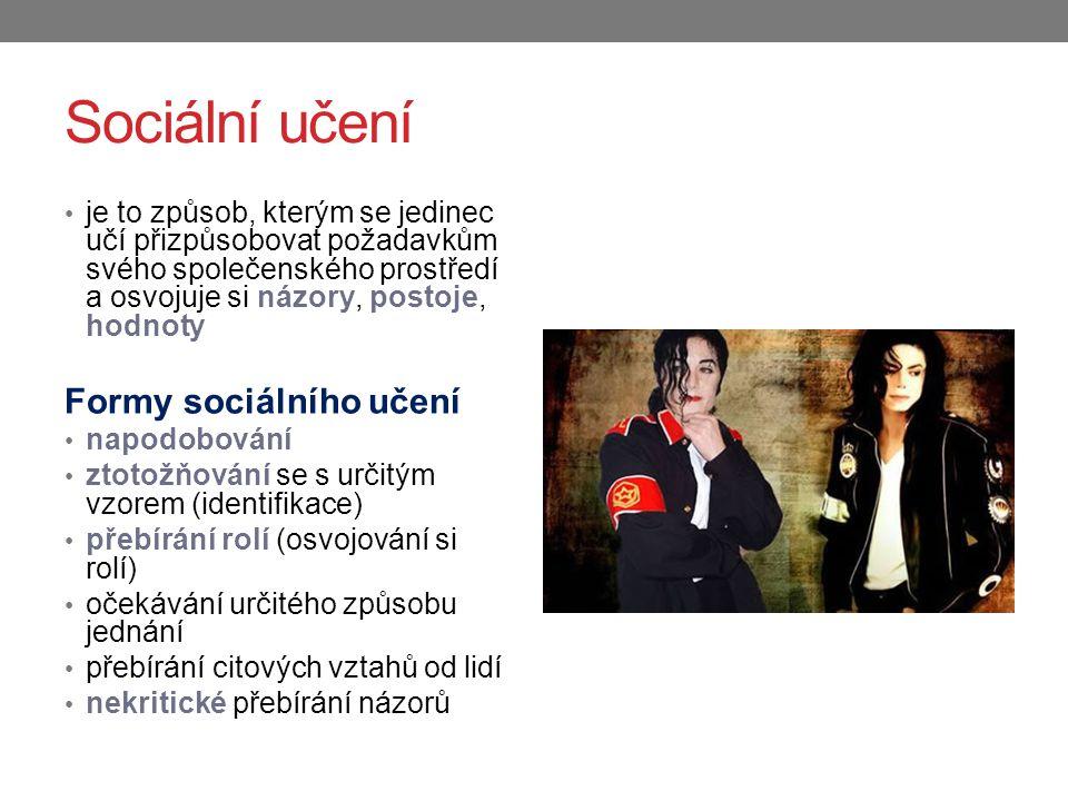 Sociální učení Formy sociálního učení
