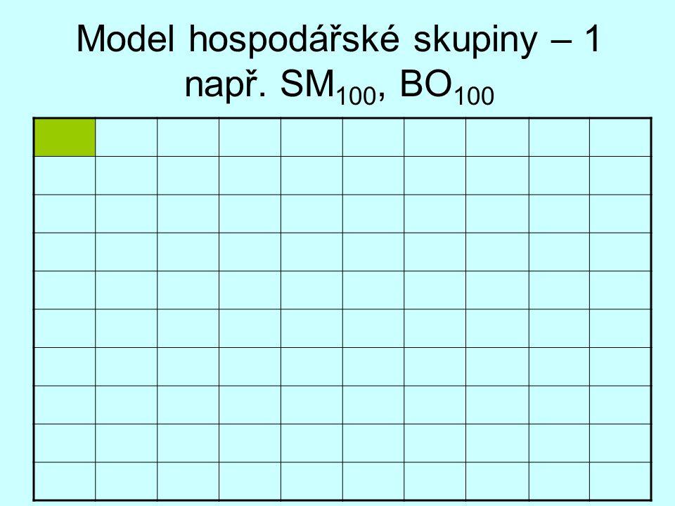 Model hospodářské skupiny – 1 např. SM100, BO100