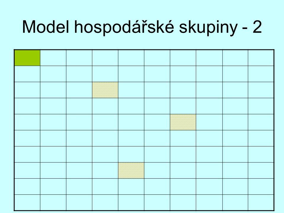 Model hospodářské skupiny - 2