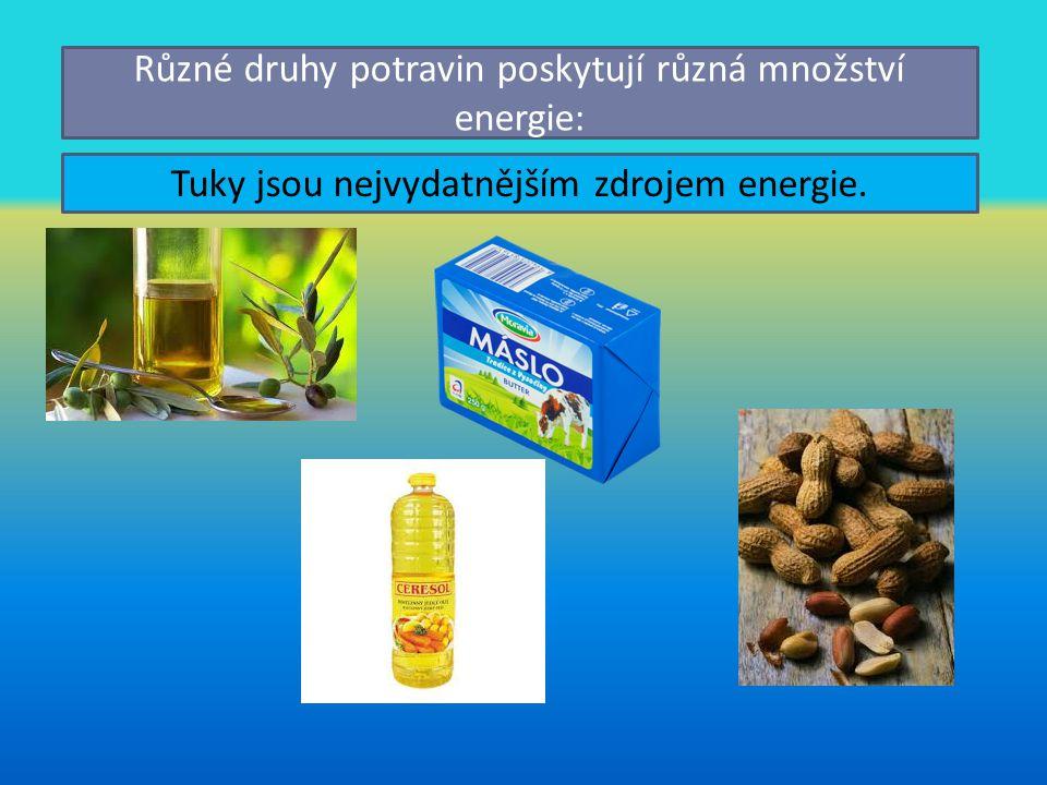 Různé druhy potravin poskytují různá množství energie:
