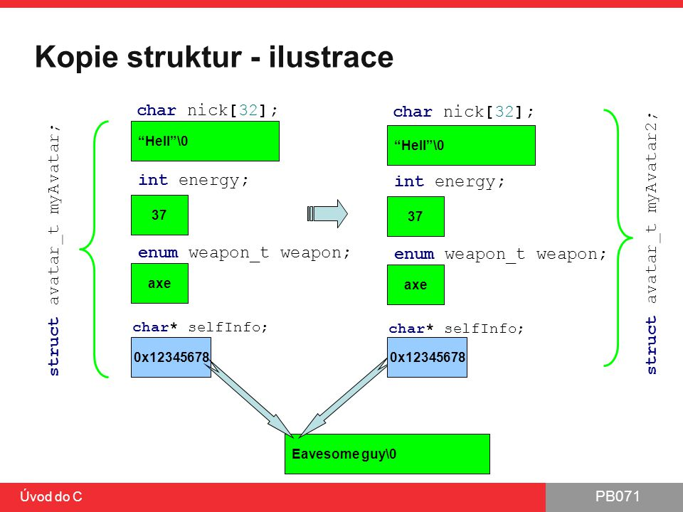 Kopie struktur - ilustrace