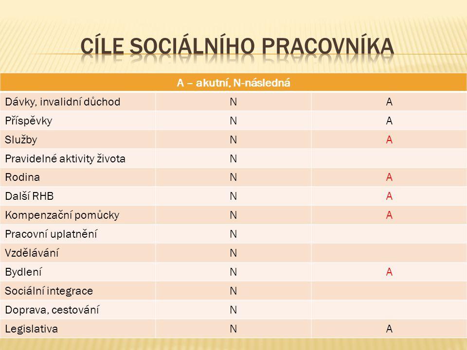 Cíle sociálního pracovníka