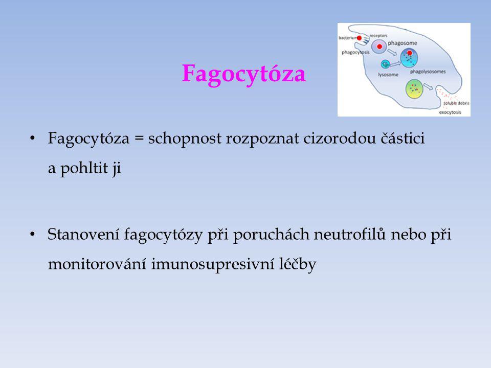 Fagocytóza Fagocytóza = schopnost rozpoznat cizorodou částici a pohltit ji.