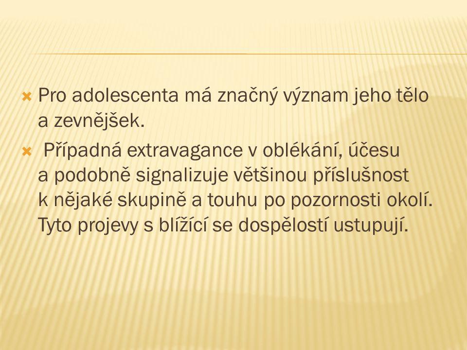 Pro adolescenta má značný význam jeho tělo a zevnějšek.