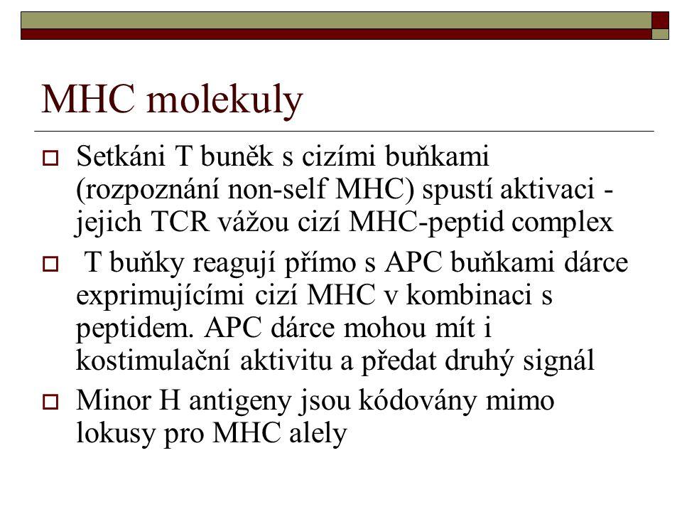 MHC molekuly Setkáni T buněk s cizími buňkami (rozpoznání non-self MHC) spustí aktivaci - jejich TCR vážou cizí MHC-peptid complex.
