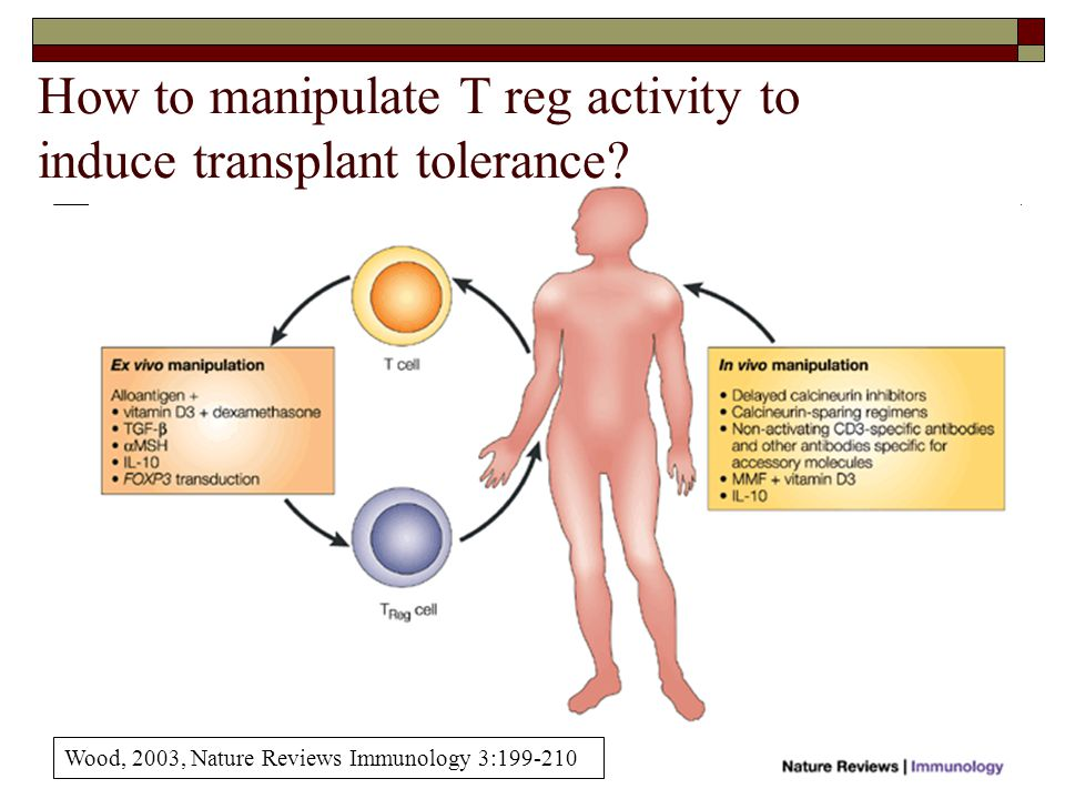 How to manipulate T reg activity to induce transplant tolerance