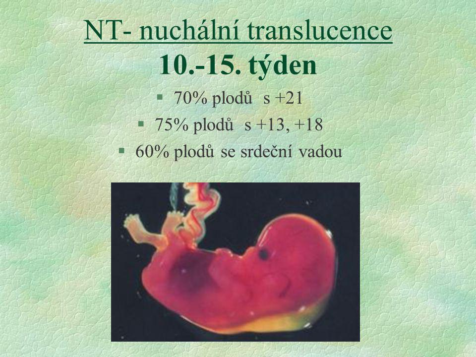 NT- nuchální translucence 10.-15. týden