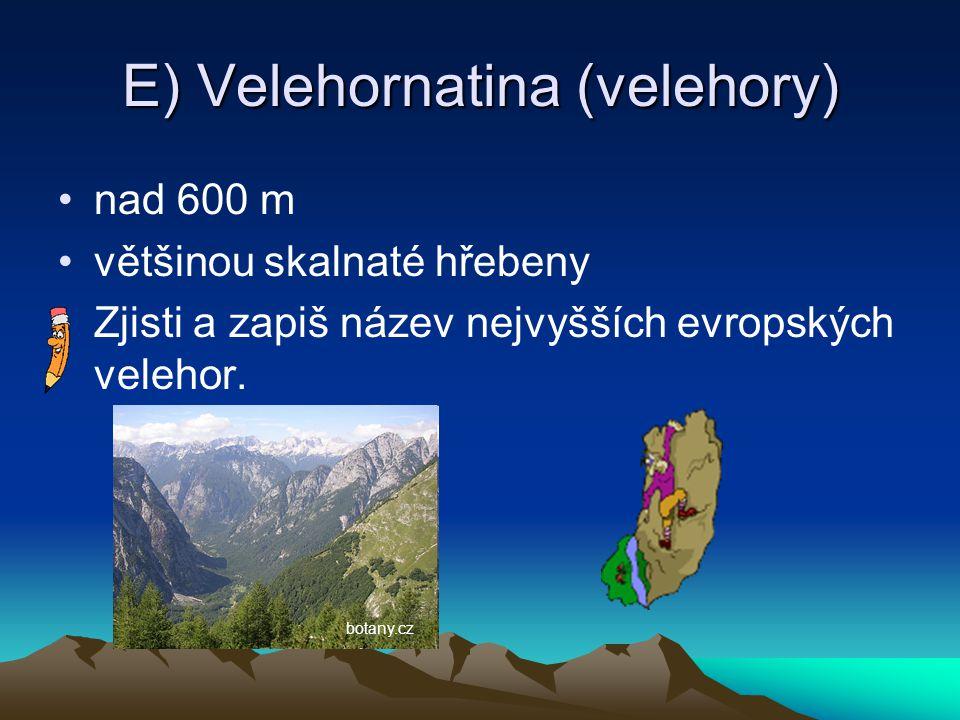 E) Velehornatina (velehory)