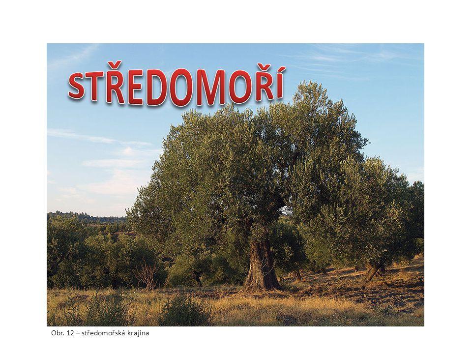STŘEDOMOŘÍ Obr. 12 – středomořská krajina