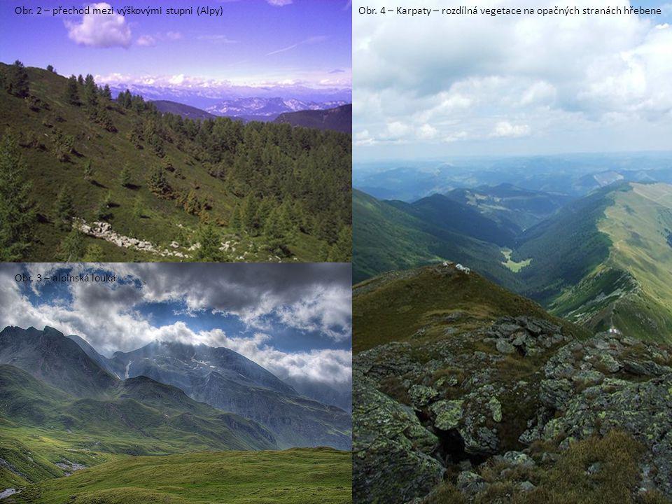 Obr. 2 – přechod mezi výškovými stupni (Alpy)