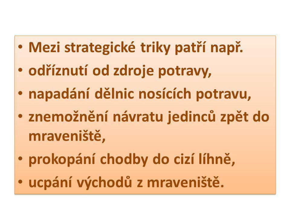 Mezi strategické triky patří např.