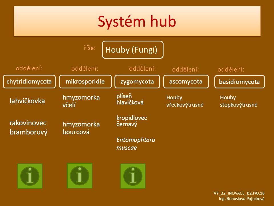 Systém hub Houby (Fungi) lahvičkovka rakovinovec bramborový