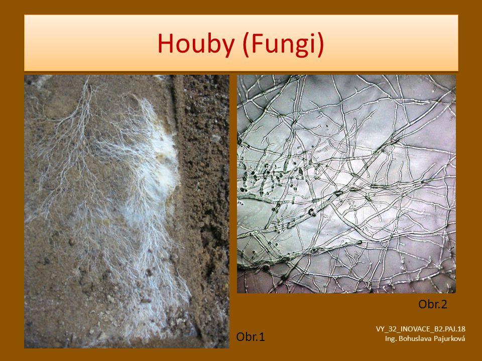 Houby (Fungi) Obr.2 Obr.1 VY_32_INOVACE_B2.PAJ.18