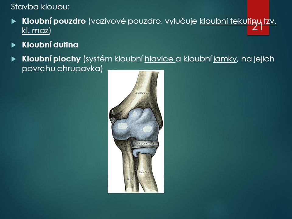 Stavba kloubu: Kloubní pouzdro (vazivové pouzdro, vylučuje kloubní tekutinu tzv. kl. maz) Kloubní dutina.