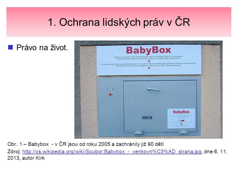 1. Ochrana lidských práv v ČR