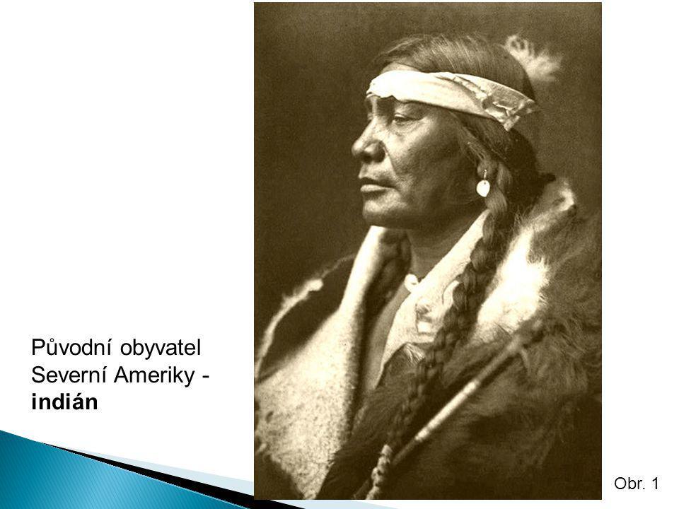 Původní obyvatel Severní Ameriky - indián