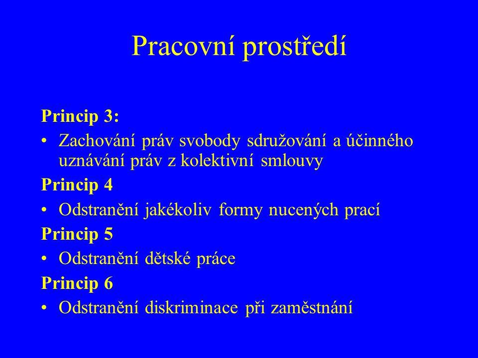 Pracovní prostředí Princip 3: