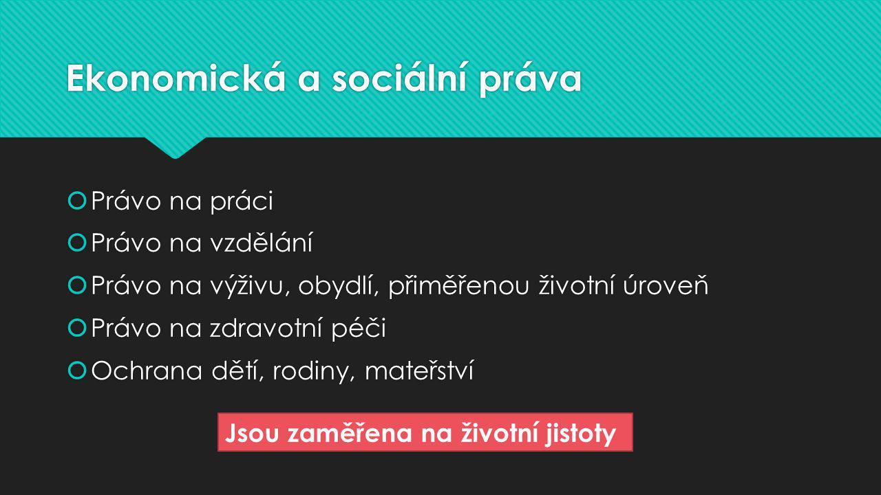 Ekonomická a sociální práva