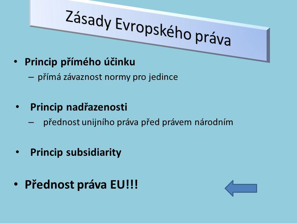 Zásady Evropského práva