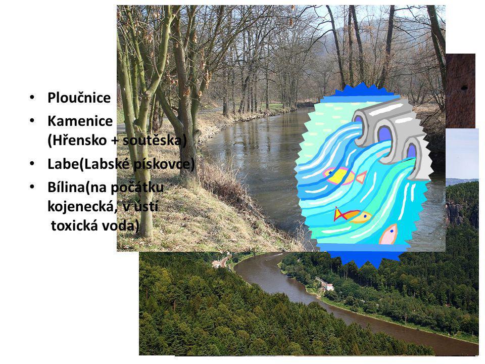 Řeky Ploučnice Kamenice (Hřensko + soutěska) Labe(Labské pískovce)