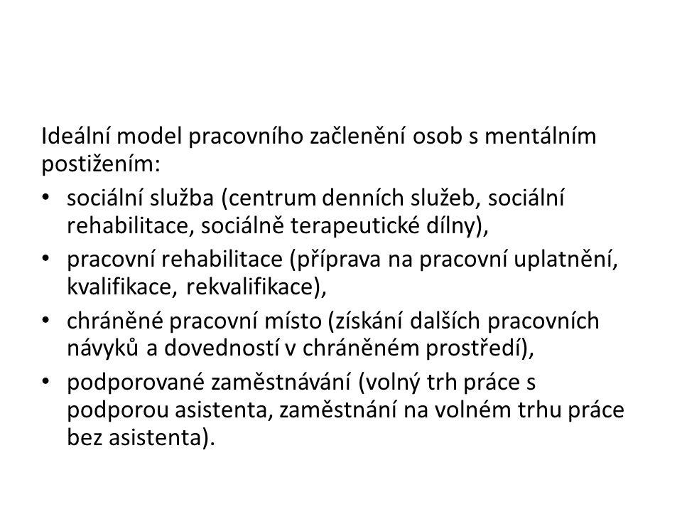 Ideální model pracovního začlenění osob s mentálním postižením: