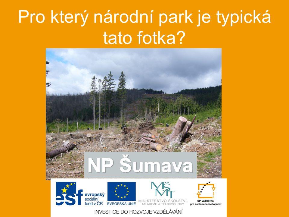 Pro který národní park je typická tato fotka
