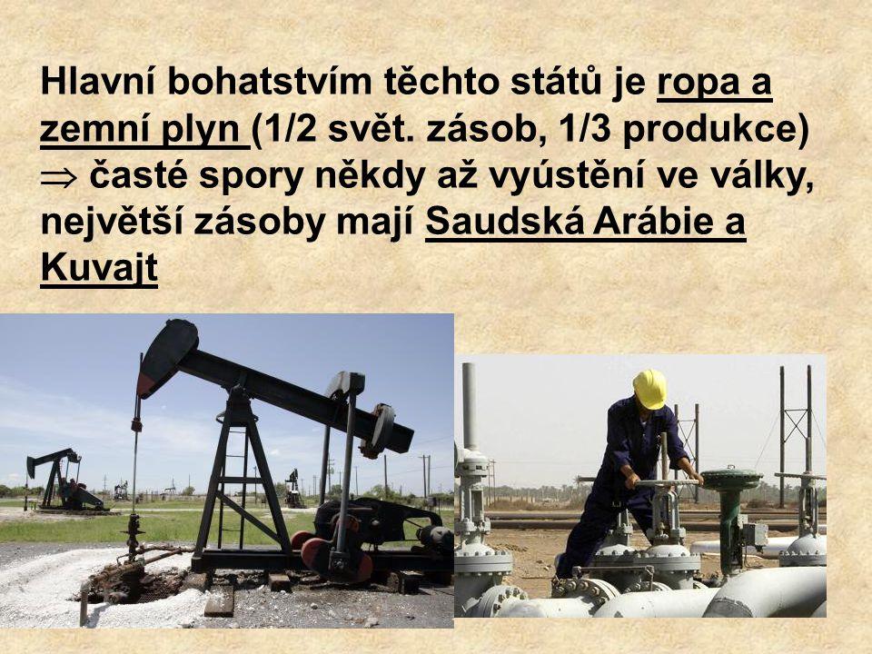 Hlavní bohatstvím těchto států je ropa a zemní plyn (1/2 svět