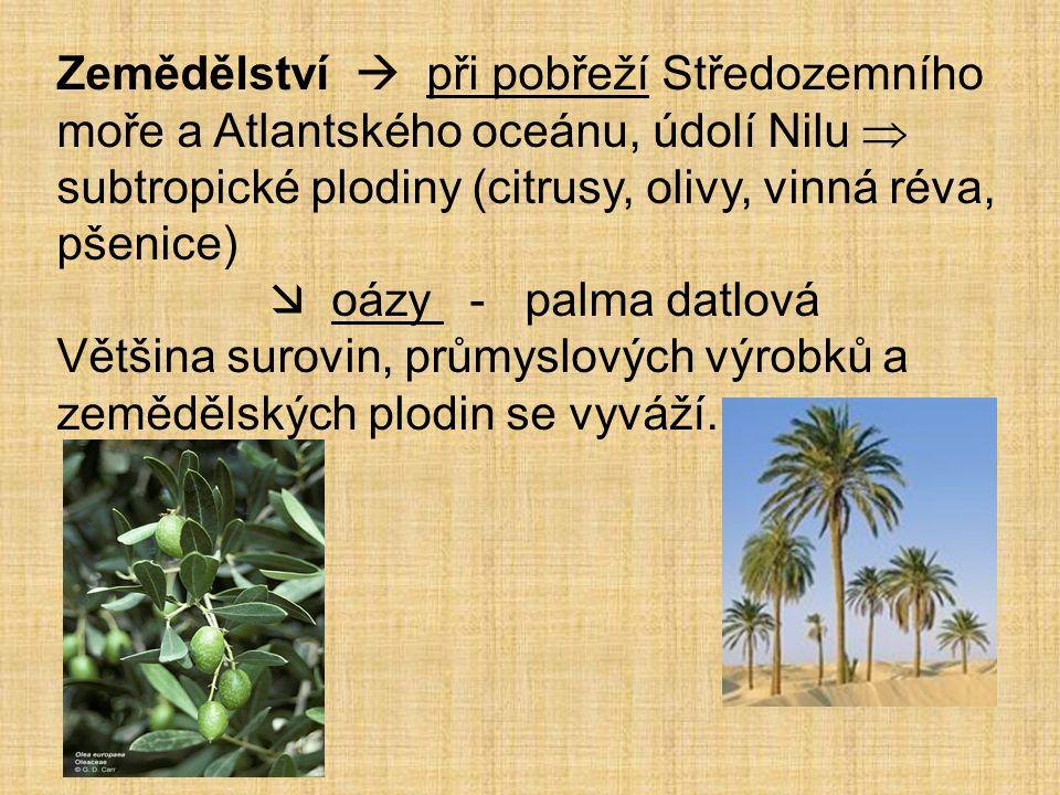 Zemědělství  při pobřeží Středozemního moře a Atlantského oceánu, údolí Nilu  subtropické plodiny (citrusy, olivy, vinná réva, pšenice)