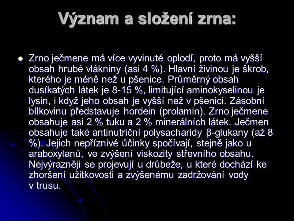 Význam a složení zrna: