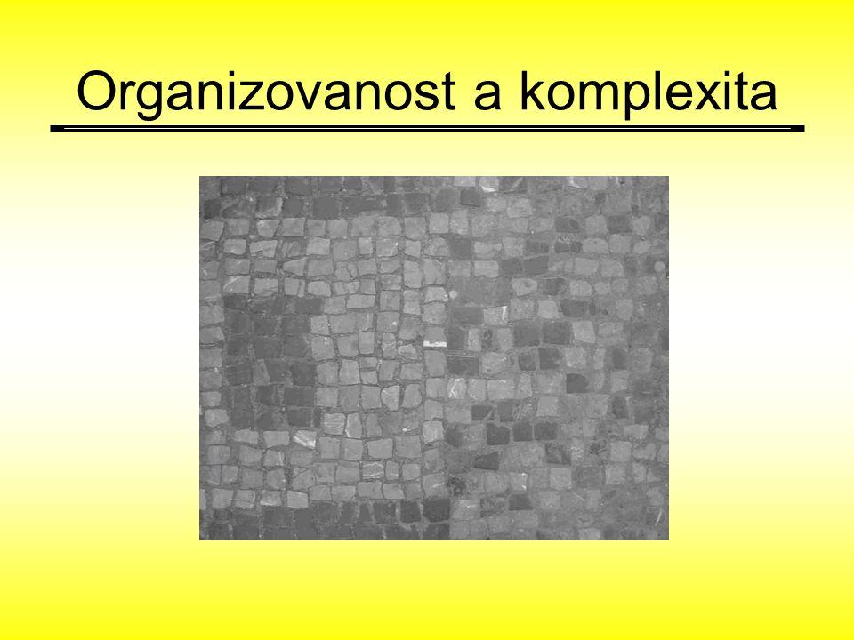 Organizovanost a komplexita
