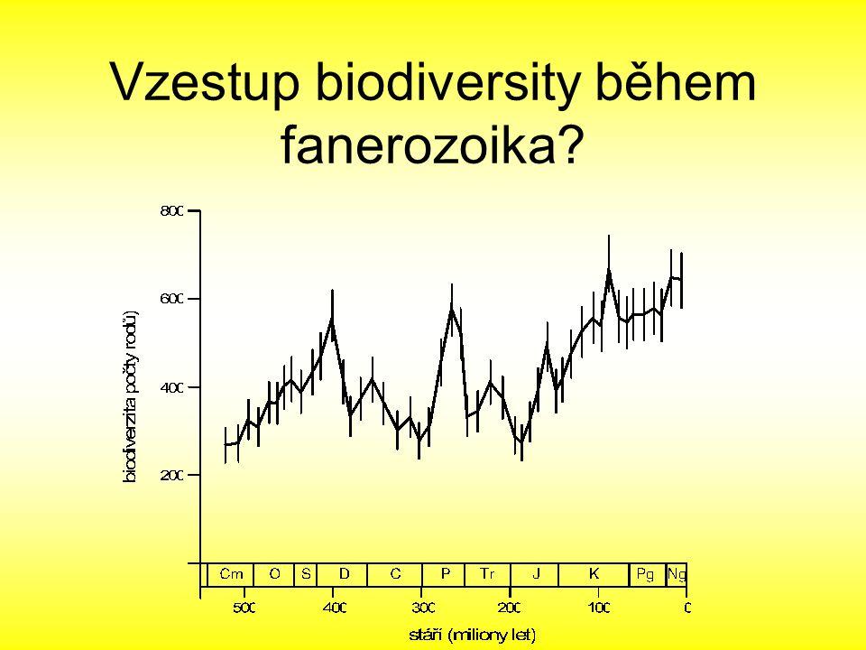 Vzestup biodiversity během fanerozoika