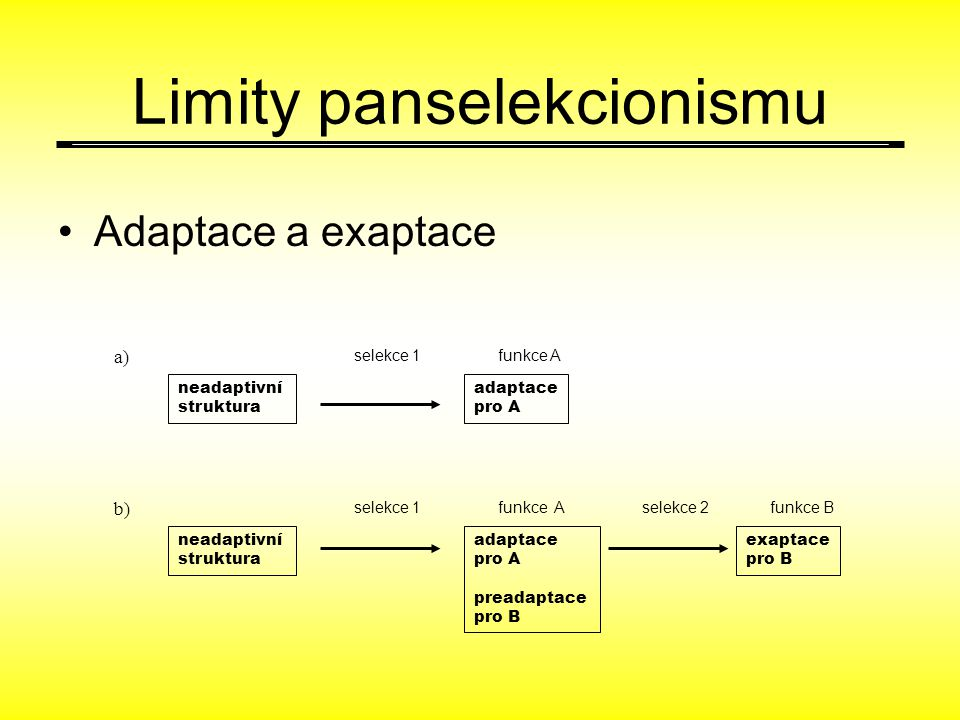 Limity panselekcionismu