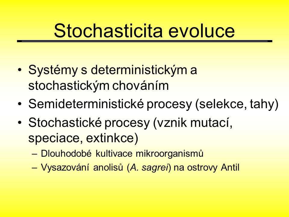 Stochasticita evoluce