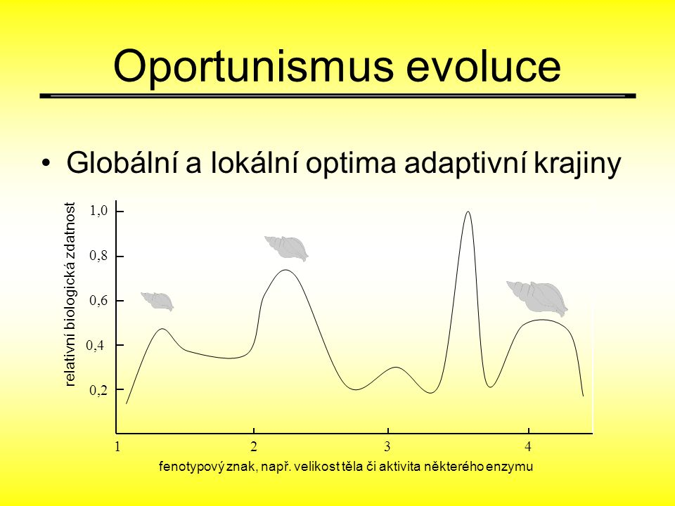 Oportunismus evoluce Globální a lokální optima adaptivní krajiny 1,0
