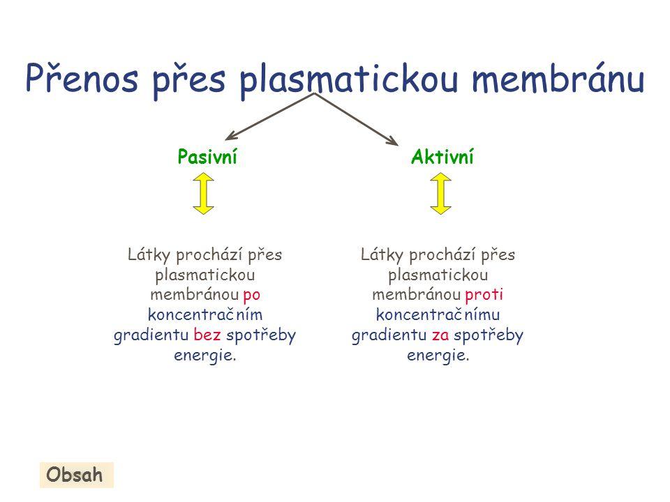 Přenos přes plasmatickou membránu